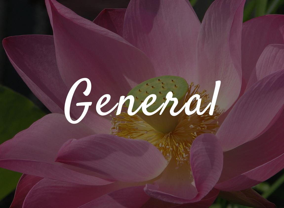 gallery-general2