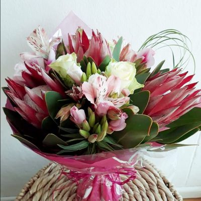 fine-flowers-protea-love